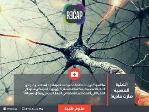 الخلية العصبية صارت عادية !
