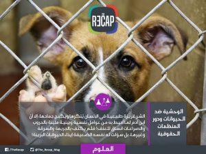 الوحشية ضد الحيوانات
